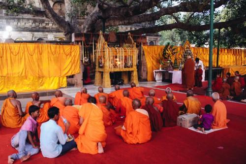 india-vipassana-bodh-gaya-9706