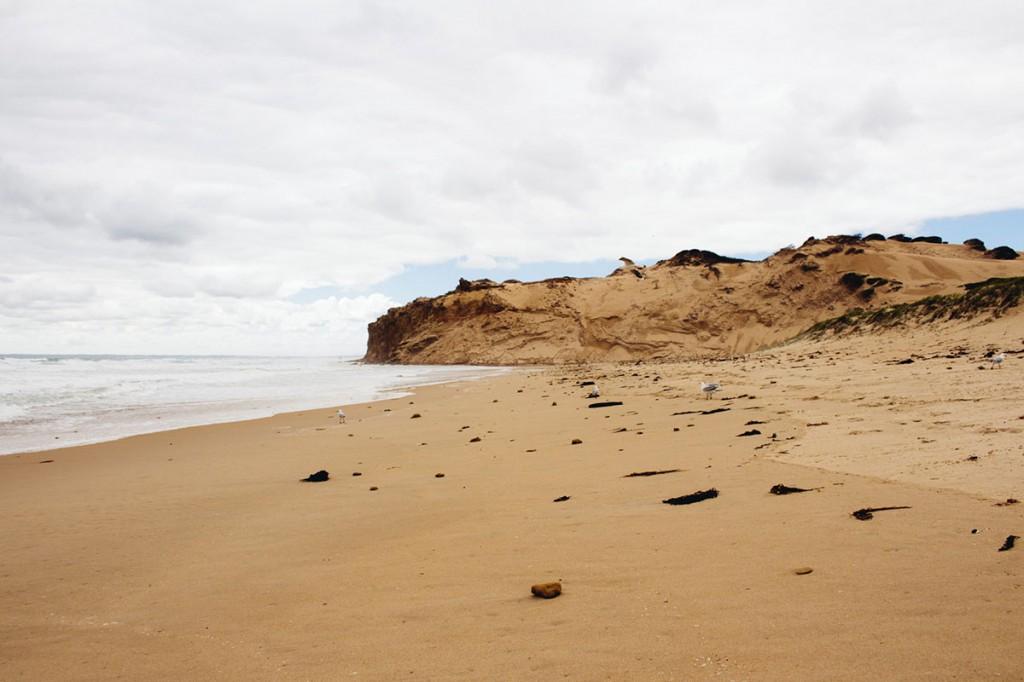 roadtrip-jervis-bay-to-great-ocean-rd-2102